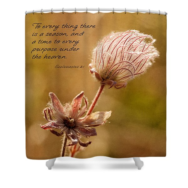 Shower Curtain featuring the photograph To Everything A Season by Mary Jo Allen