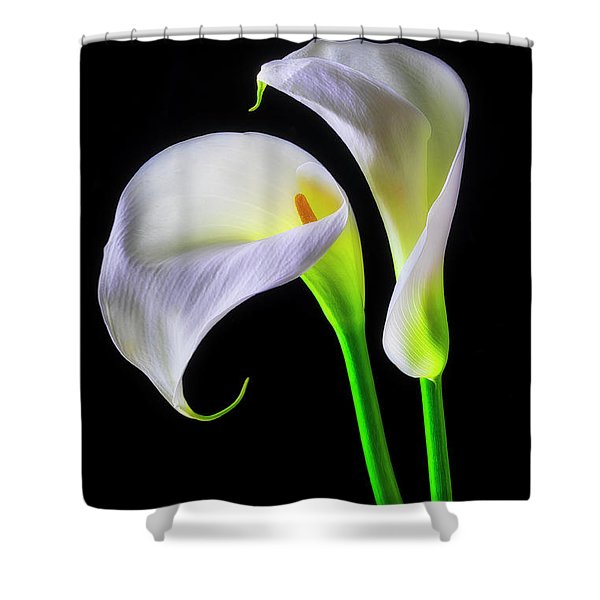 Together Calla Lilies Shower Curtain