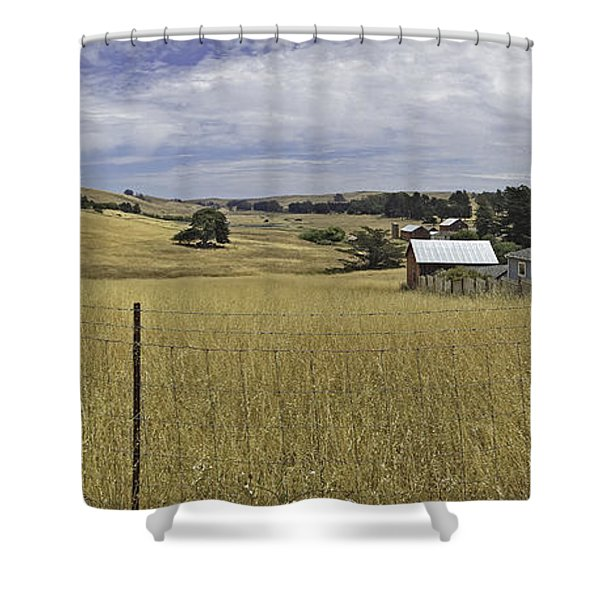 Tomales Study Shower Curtain