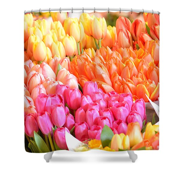 Tons Of Tulips Shower Curtain