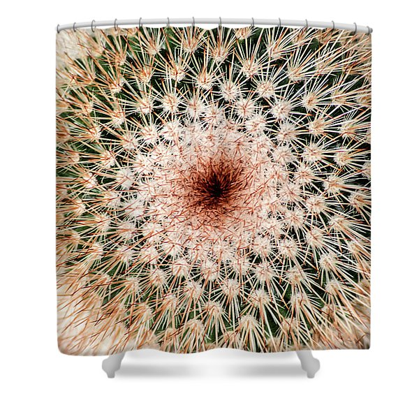 Top Of Cactus Shower Curtain