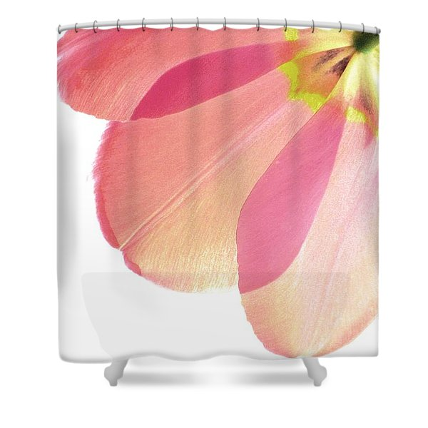Topsy Turvy Tulip Shower Curtain