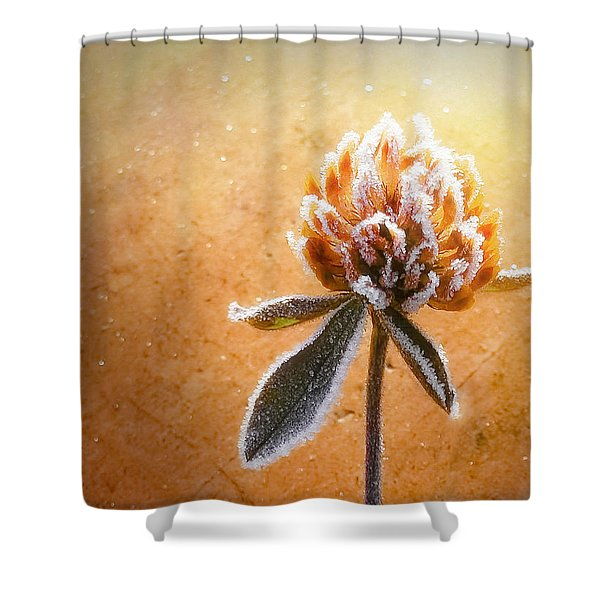 Torcia Shower Curtain