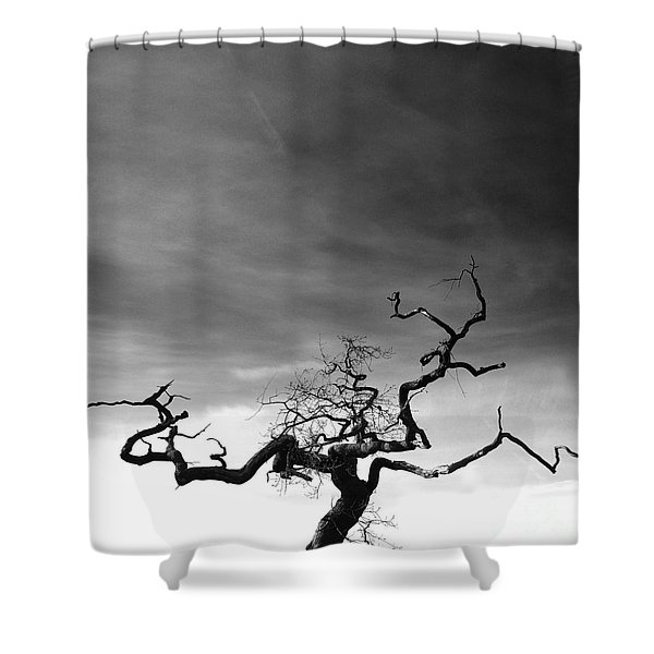 Tormented In Grey Shower Curtain