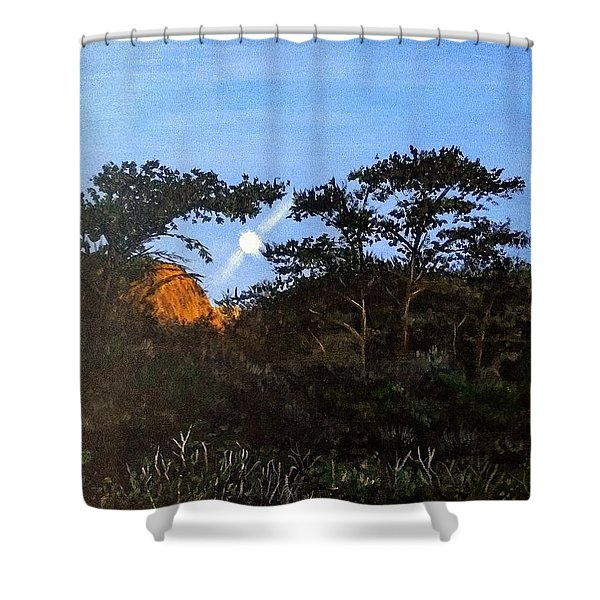 Shower Curtain featuring the painting Torrey Pines In The Morning by Kevin Daly