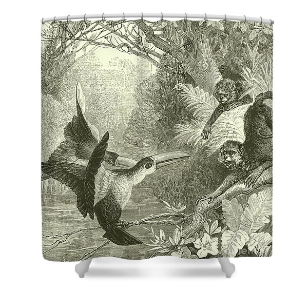 Toucans And Monkeys Shower Curtain