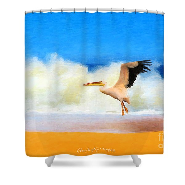 Touch Down Shower Curtain