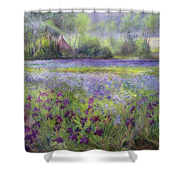 Trackway Past The Iris Field Shower Curtain