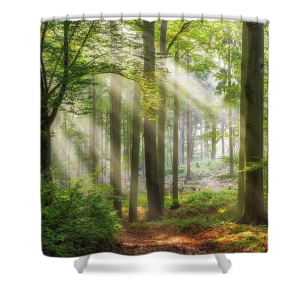 Trail To Relaxation Shower Curtain
