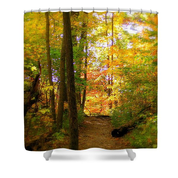 Trailhead Light Shower Curtain