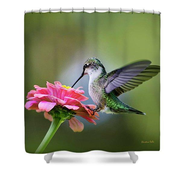 Tranquil Joy Hummingbird Square Shower Curtain