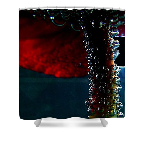 Transcendence 2 Shower Curtain