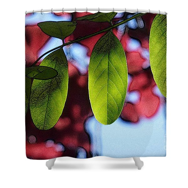 Transparence 21 Shower Curtain