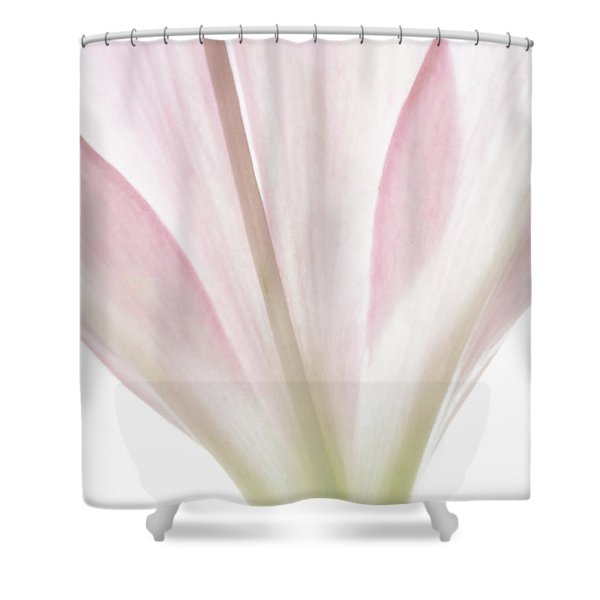 Transparent Lilly I Shower Curtain