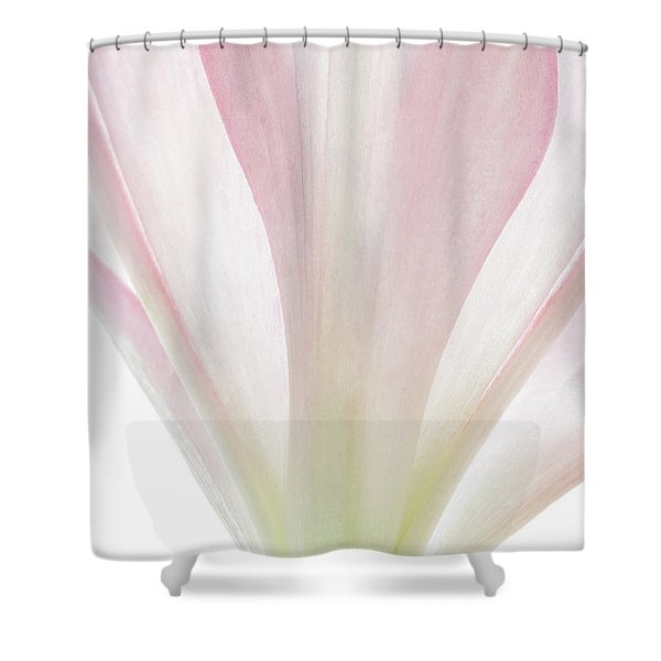 Transparent Lilly II Shower Curtain