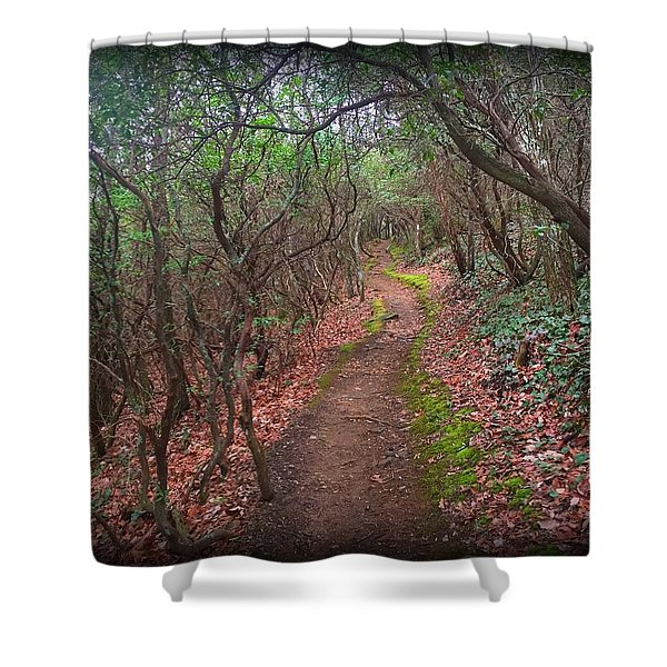 Tray Mountain Shower Curtain