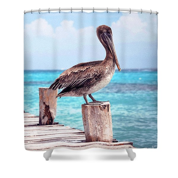 Treasure Coast Pelican Pier Seascape C1 Shower Curtain