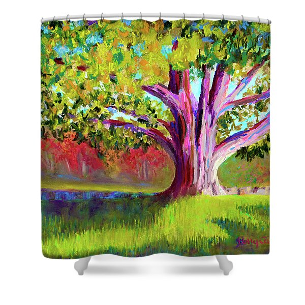Tree At Hill-stead Museum Shower Curtain