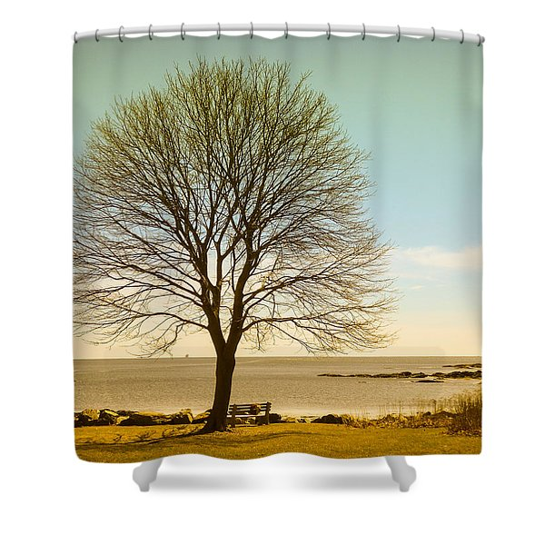 Shower Curtain featuring the photograph Tree At New Castle Common by Nancy De Flon