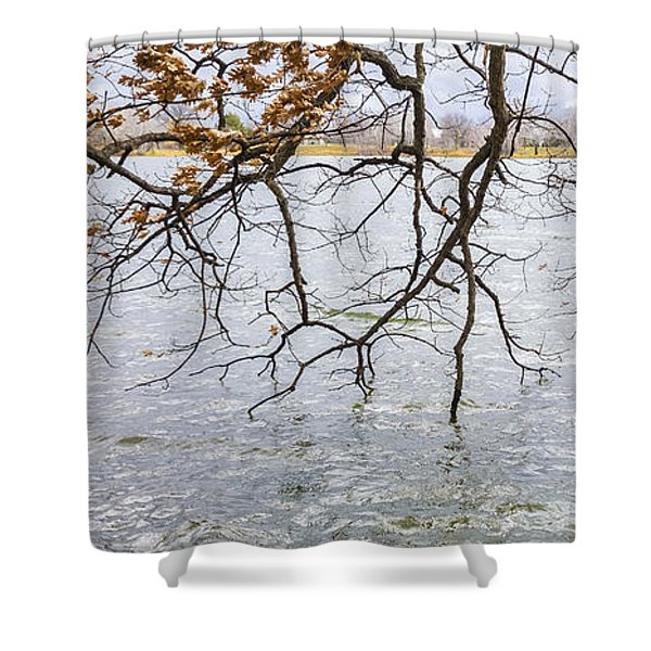 Tree Branches Over Lake Shower Curtain