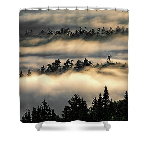 Trees In The Clouds Shower Curtain