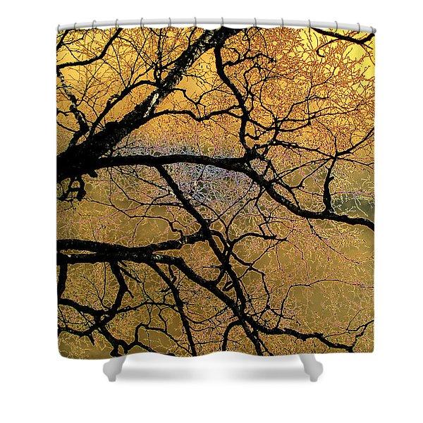 Tree Fantasy 7 Shower Curtain