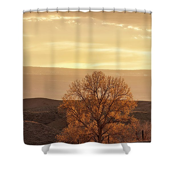 Tree In Desert At Sunset Shower Curtain
