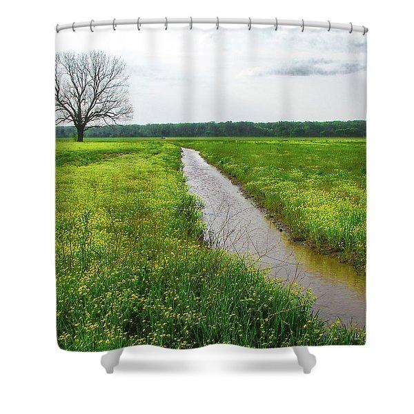Tree In Field 2 Shower Curtain