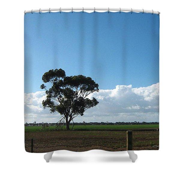Tree In Field Shower Curtain