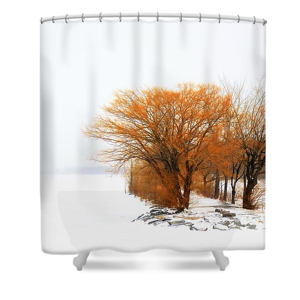 Tree In The Winter Shower Curtain