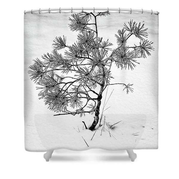 Tree In Winter Shower Curtain