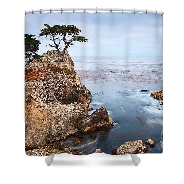 Tree Of Dreams - Lone Cypress Tree At Pebble Beach In Monterey California Shower Curtain