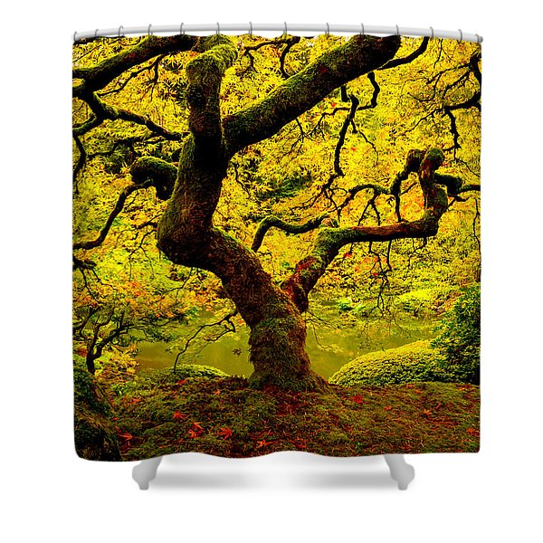 Tree Of Light Panel 2 Shower Curtain