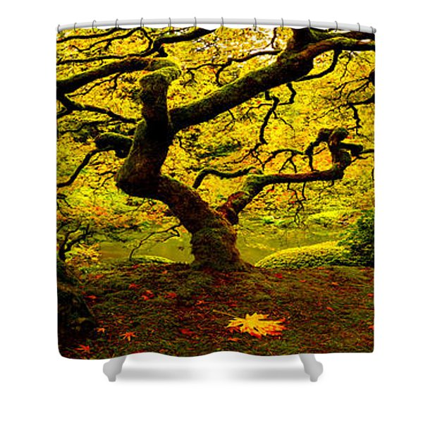 Tree Of Light Pano Shower Curtain