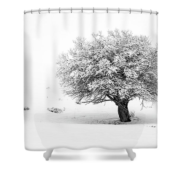 Tree On Snowy Slope Shower Curtain