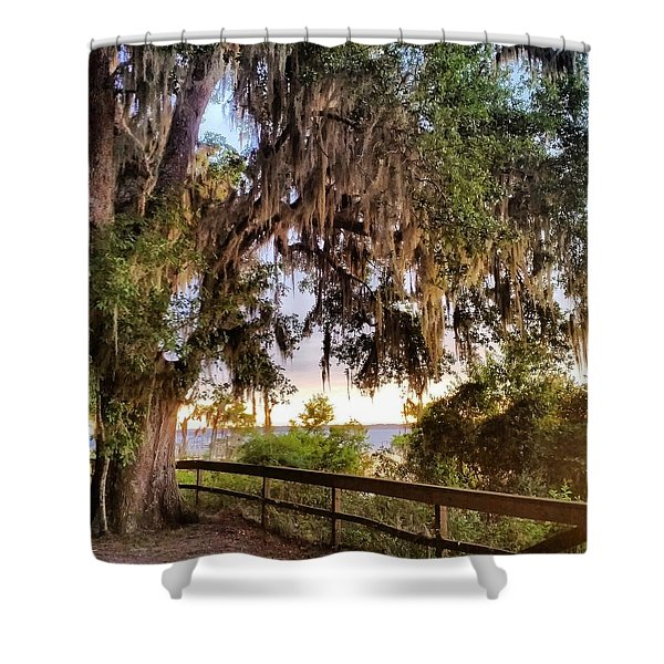 Tree On The Riverbank Shower Curtain