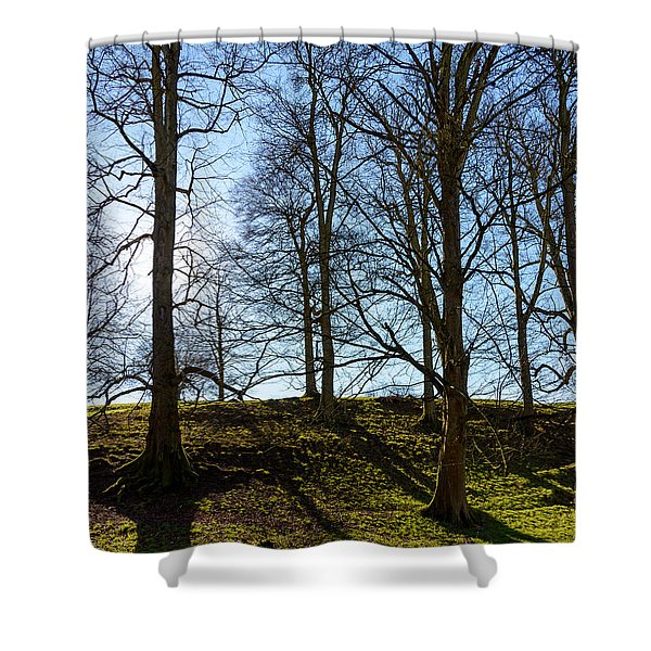 Tree Silhouettes Shower Curtain