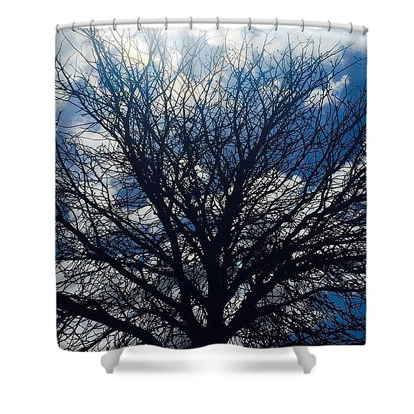 Tree Sun And Blue Sky Shower Curtain