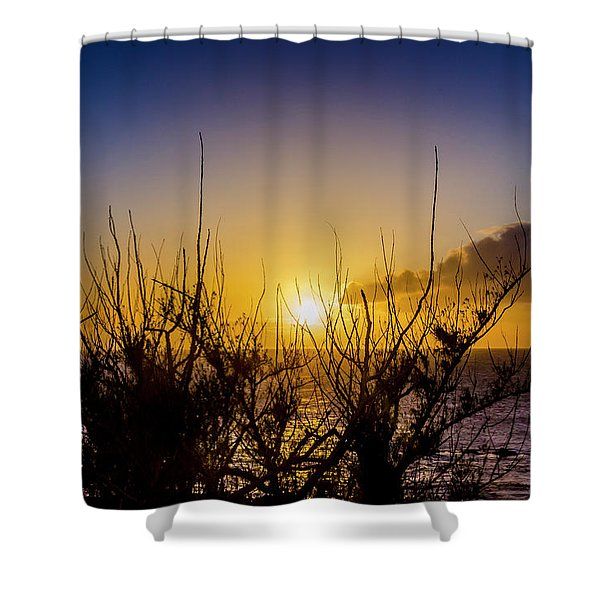 Tree Sunset Shower Curtain