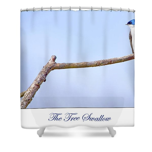 Tree Swallow On Branch Shower Curtain