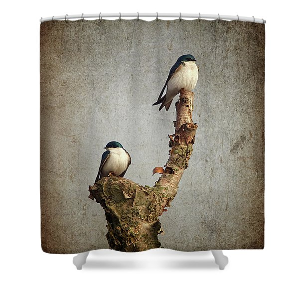 Tree Swallows Shower Curtain