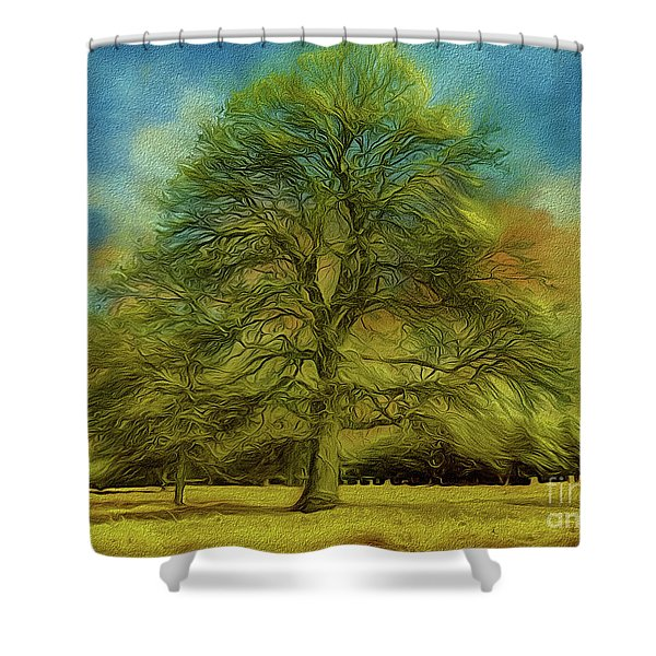 Tree Three Shower Curtain