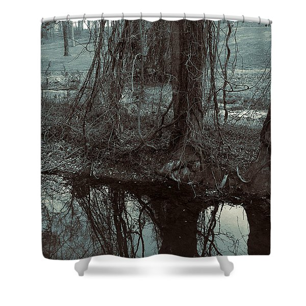 Shower Curtain featuring the photograph Tree Vines Water by Robert G Kernodle