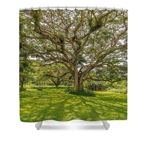 Treebeard Shower Curtain