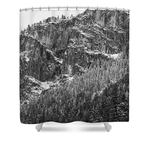 Treefall Shower Curtain