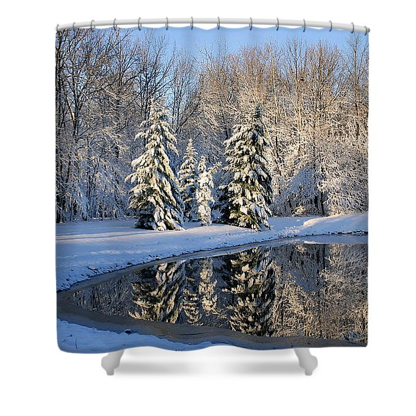 Treeflections Shower Curtain