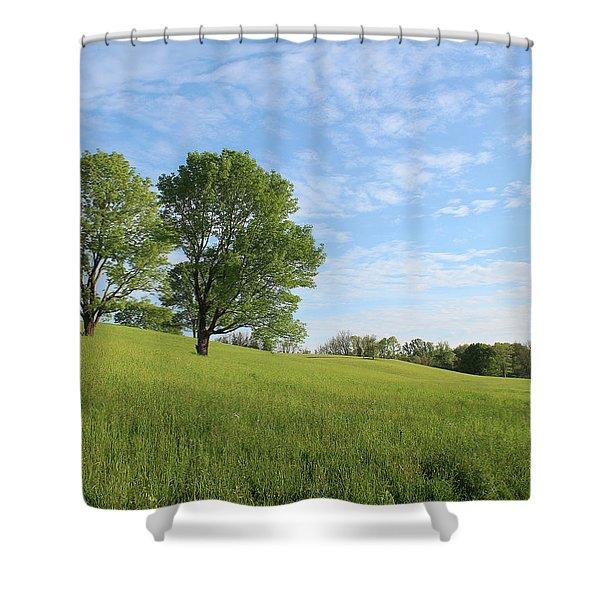 Summer Trees 3 Shower Curtain