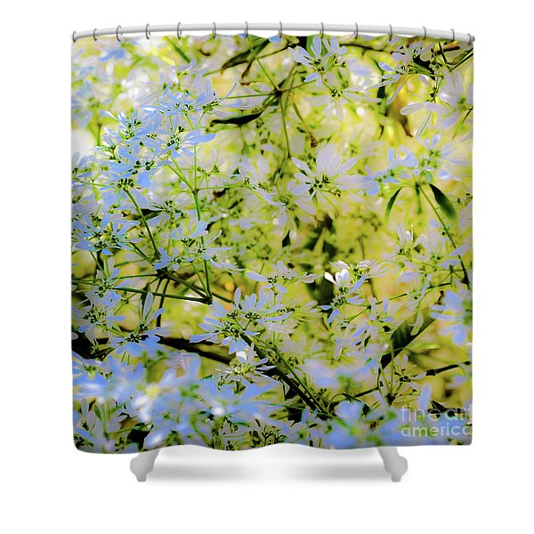 Trees And Leaves Shower Curtain