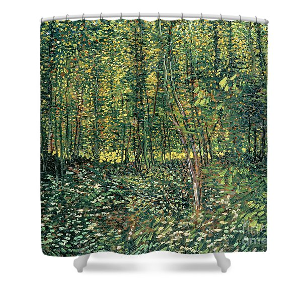 Trees And Undergrowth Shower Curtain