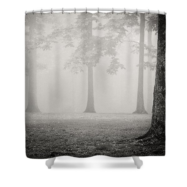 Trees In Fog - Bw Shower Curtain